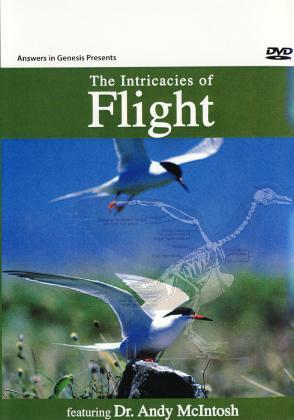 THE INTRICACIES OF FLIGHT
