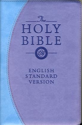 THE HOLY BIBLE - ENGLISH STAND