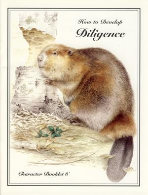 HOW TO DEVELOP DILIGENCE
