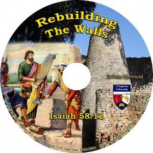 REBUILDING THE WALLS - CD